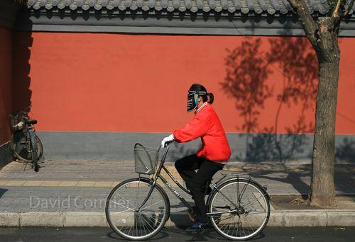 PékinVélo